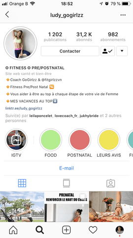 Bio Instagram influenceuse