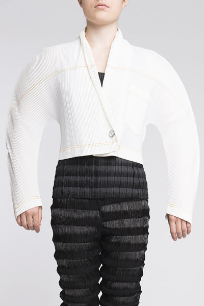 Issey Miyake <br> Abstract Pleated Jacket