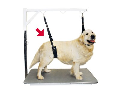 SHOW TECH COMFORT BELLY STRAP FOR LARGE DOGS