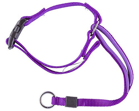 GENTLE LEADER HEADCOLLAR - EXTRA LARGE (PURPLE)