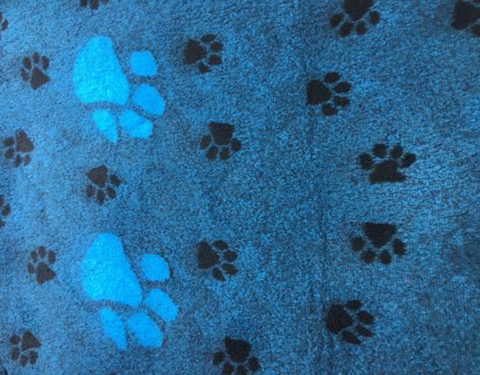 VET BED - RUBBER BACKED - TEAL WITH LARGE PAWS