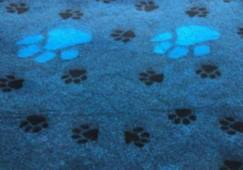 ** NO BACKING ** VET BED - TEAL LARGE PAW