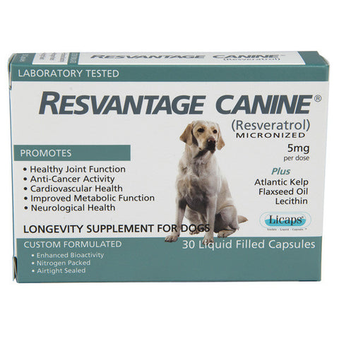 RESVANTAGE CANINE - GEL CAPSULES (30 PACK)
