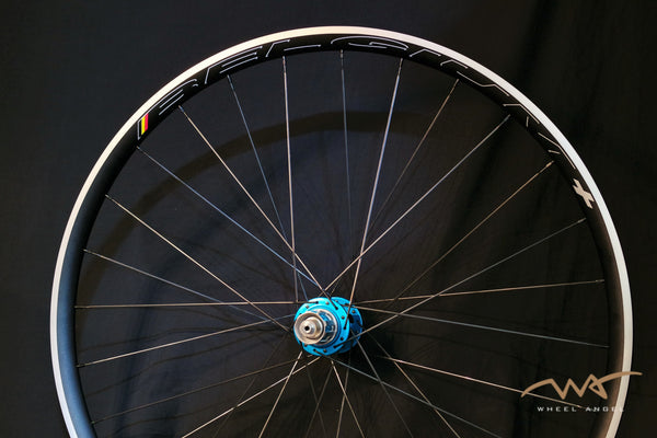 HED Belgium C2 Plus / Chris King R45 / Sapim CX Ray