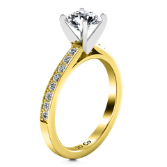 Pave Diamond EngagementRing Belle 14K Yellow Gold