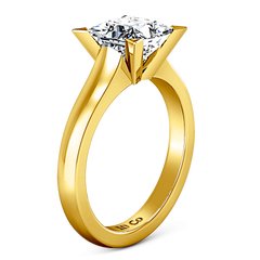 Solitaire Diamond Engagement Ring Jenny 14K Yellow Gold engagement rings imaginediamonds