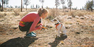 Ruffwear Dog Gear for Active Dogs