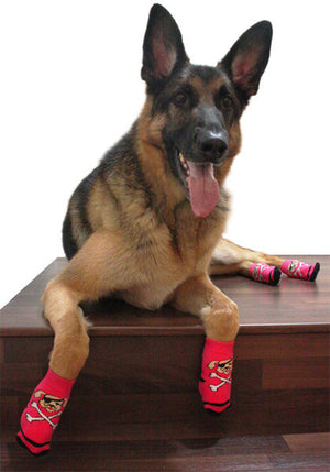 Pawks Anti-Slip Dog Socks on a German Shepherd