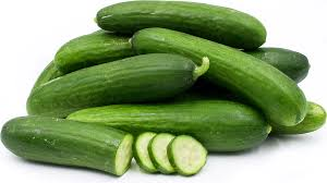 Persian Cucumber (Texas)