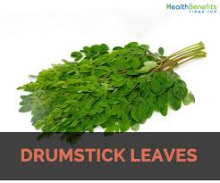 Drumsticks Leaves : Texas