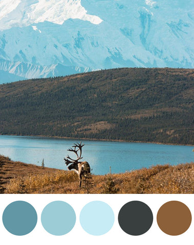One Tiny Tribe - Boys Room Colour palettes inspired by the great outdoors