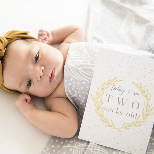 Baby Milestone Cards |  Luxe Collection |  The Autumn Honey Stylish Baby Milestone Cards + Baby Announcement Baby Wraps + swaddles - - AfterPay - Free Shipping - lovepaperink.com.au