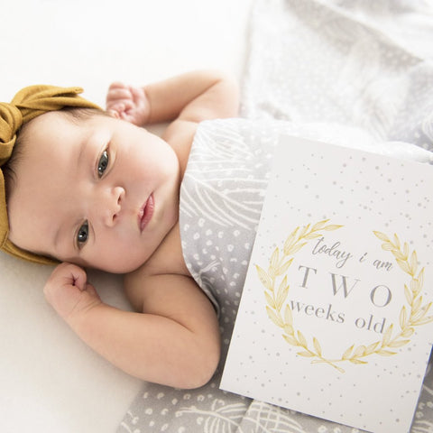 Baby Milestone Cards |  Luxe Collection |  Blushing Blossom