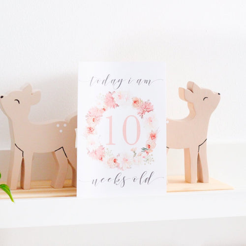 Baby Milestone Cards |  Luxe Collection |  Blushing Blossom Stylish Baby Milestone Cards + Baby Announcement Baby Wraps + swaddles - - AfterPay - Free Shipping - lovepaperink.com.au