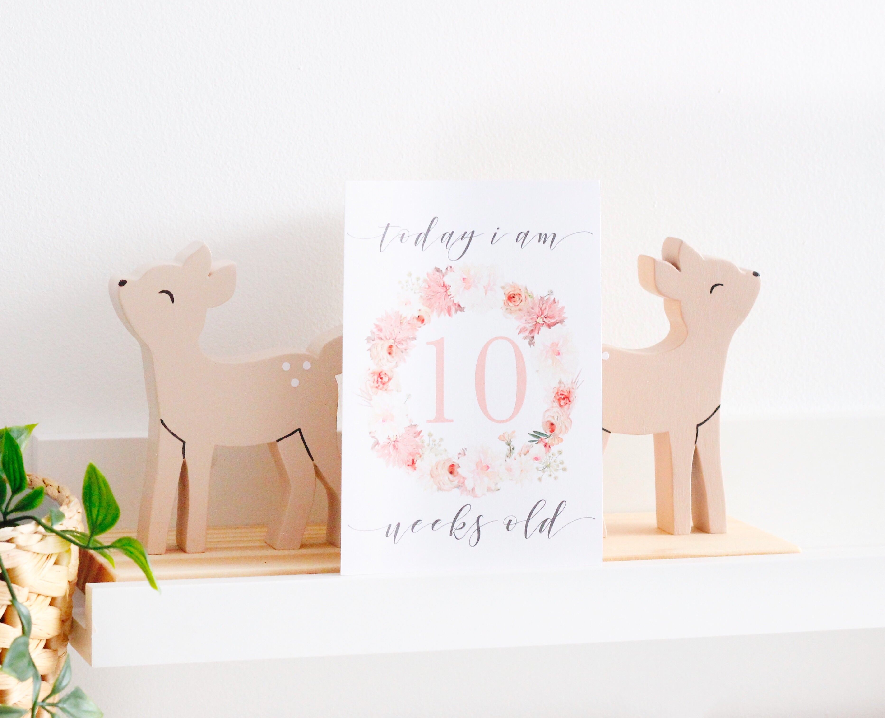 Matching Organic Muslin Wrap + Milestone Cards // Blushing Blossom Stylish Baby Milestone Cards + Baby Announcement Baby Wraps + swaddles - - AfterPay - Free Shipping - lovepaperink.com.au