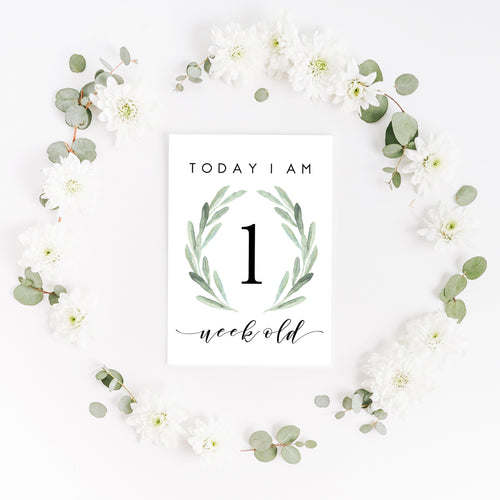 Baby Milestone Cards |  Luxe Collection |  Wild Fern Stylish Baby Milestone Cards + Baby Announcement Baby Wraps + swaddles - - AfterPay - Free Shipping - lovepaperink.com.au