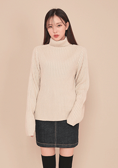 Simple Long Sleeve Turtleneck Knit