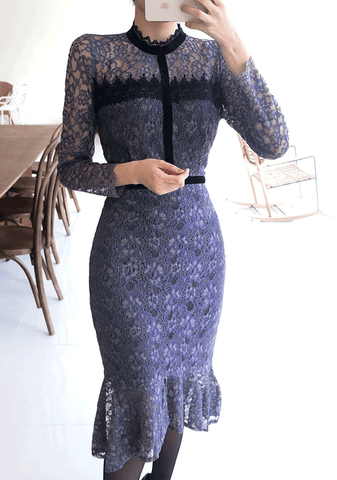 Elegant Lace Mermaid Dress