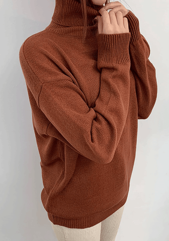 Neith Loose Fit Turtleneck Knit