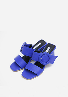 Buckle Strap Color Heels