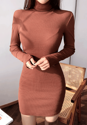 Average 170. Slim Fit Turtle-Neck Dress