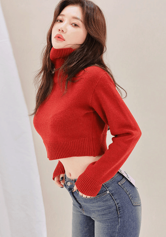 Warm Cropped Turtlenck Knit