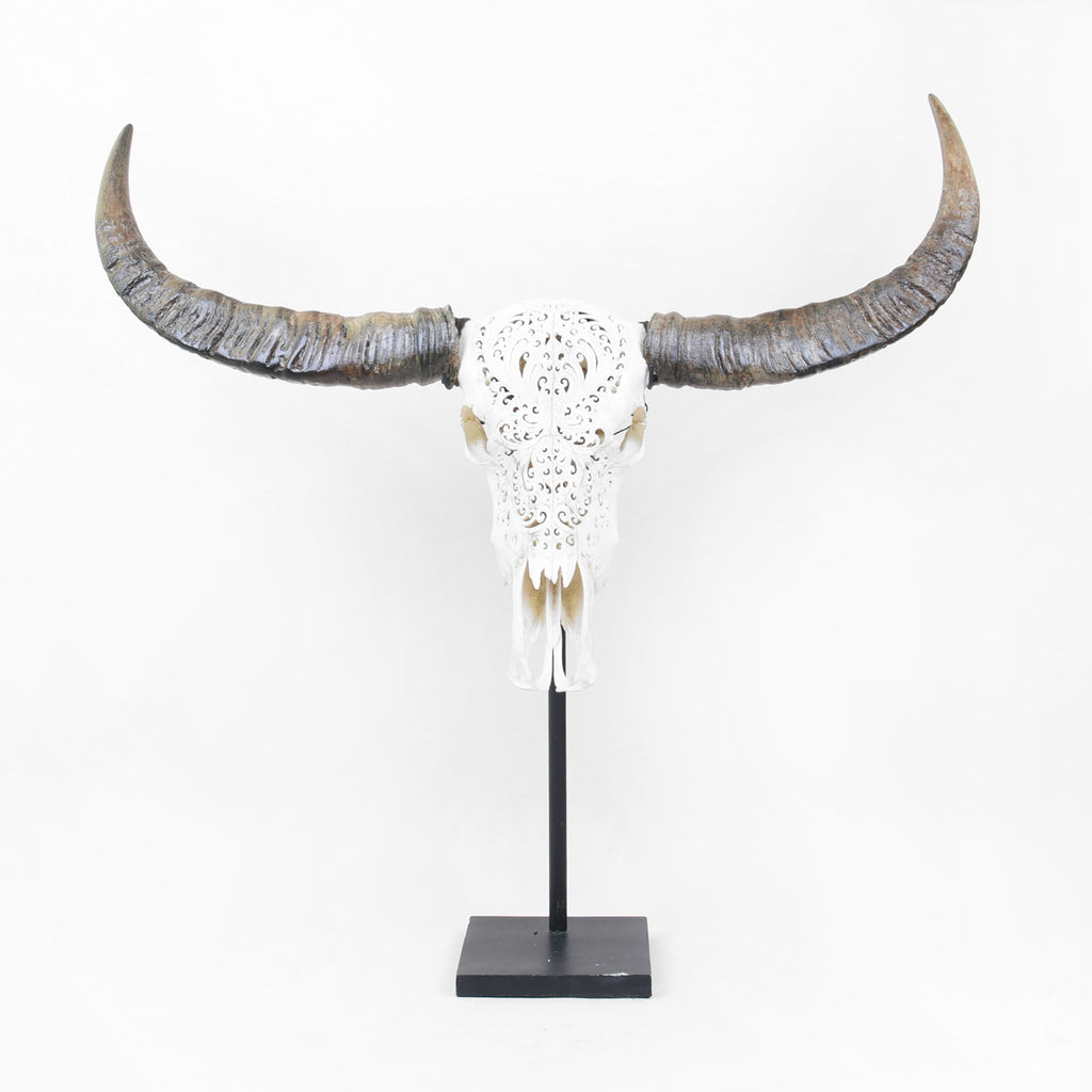 Buffalo Head - SALE! -