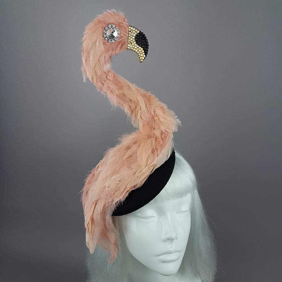 """Exotique"" Flamingo Feather Crystal Hat"