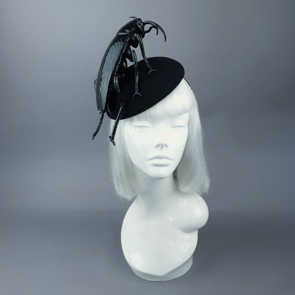 """Cucaracha"" Giant Cockroach Insect Bug Fascinator Hat"
