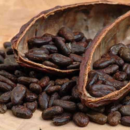 Want to Know How You Can Enjoy Healthy Chocolate? Check out Cacao.