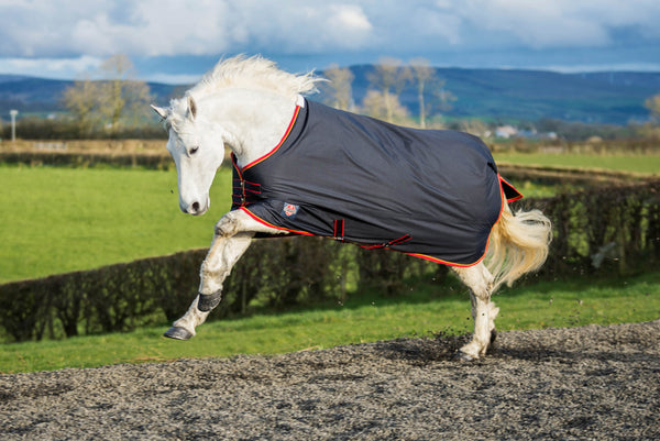 Equisential Standard Medium Turnout Rug