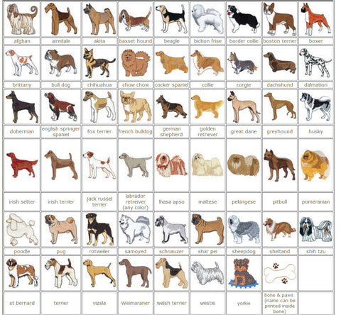 Pocket Dog Breeds Name