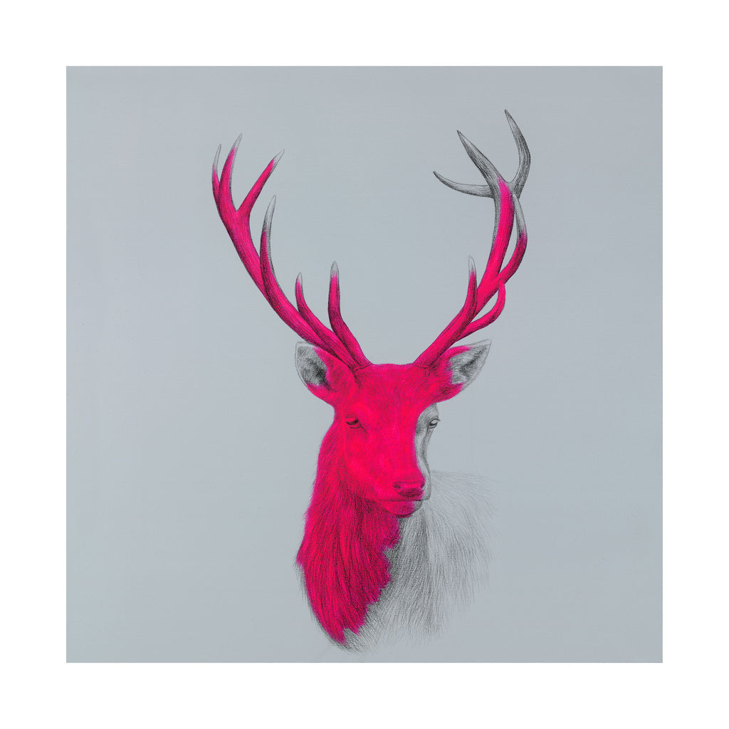 'Wildly Sublime 2#' By Louise McNaught