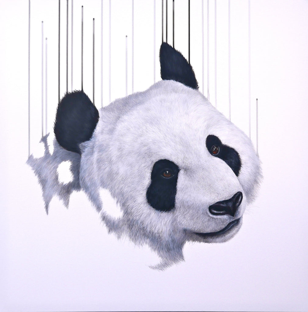 'Pandering I' Limited Edition By Louise McNaught