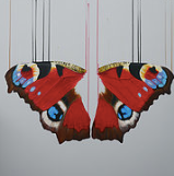 """Infatuation"" By Louise McNaught"
