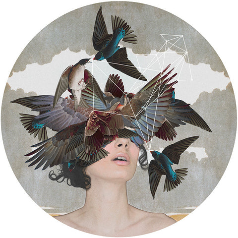 """Swallow Blind"" Giclée by Alexandra Gallagher"