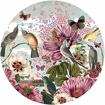 """Birds And Butterflies"" Limited Edition By Alexandra Gallagher"