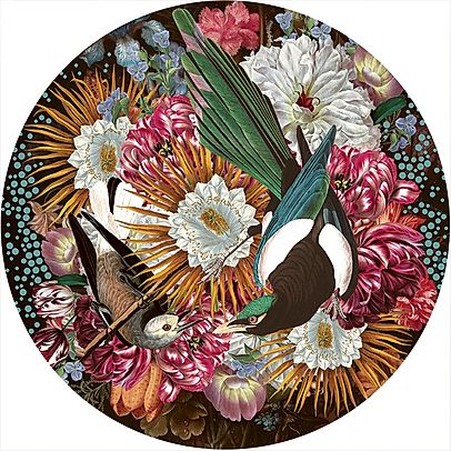 """Magpie"" Limited Edition By Alexandra Gallagher"