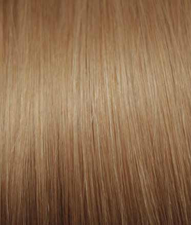 Toffee Blonde Extensions