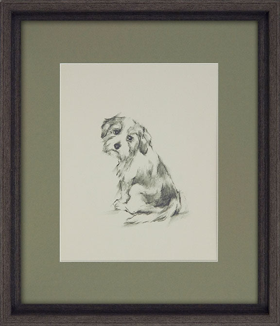 Ethan Harper ' Puppy Dog Eyes II' - Framed Open Edition Art
