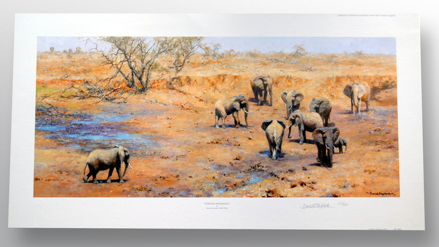 """African Waterhole"" by David Shepherd OBE (limited edition print) - New Look Art"