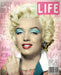 """Warhols Marilyn"" by JJ Adams (limited edition print)"
