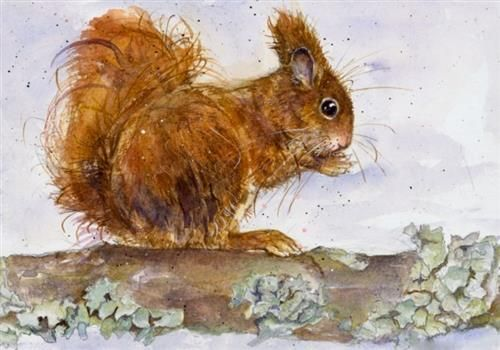 Kate Wyatt - 'Red Squirrel' - Limited Edition Art
