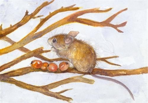 Kate Wyatt - 'Wood Mouse Feast I' - Limited Edition Art