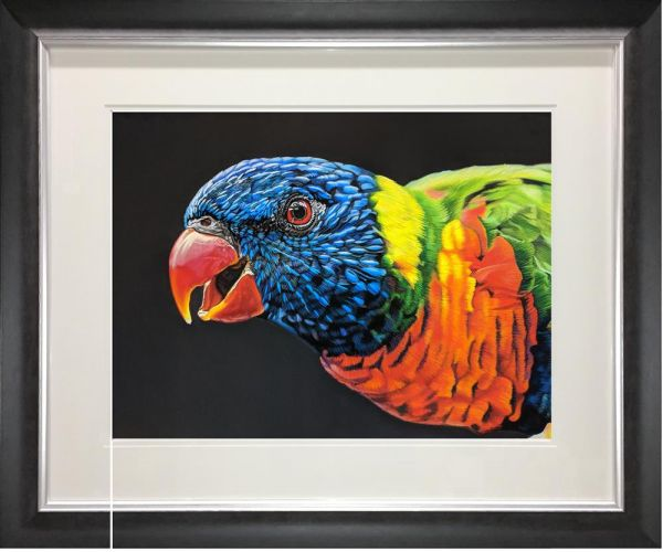 Samantha Greenhill - 'Rainbow Lorikeet Wingates Gallery' - Original Art