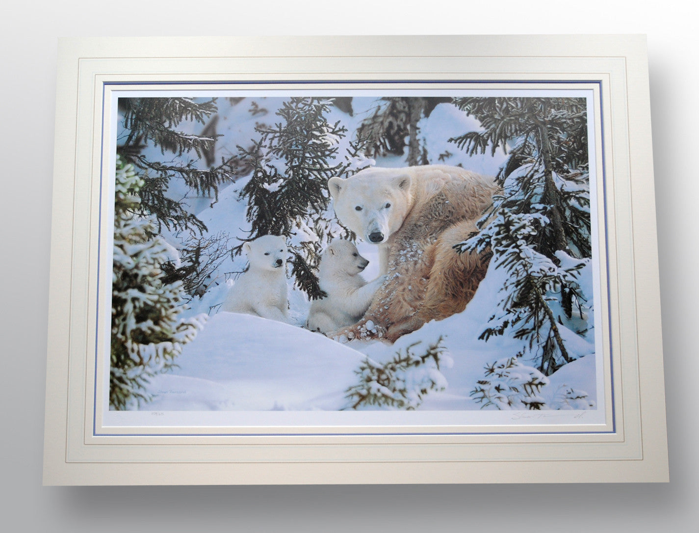 """Warmth of Nature"" by Steven Townsend (limited edition print)"