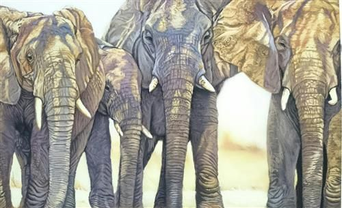 Samantha Greenhill - 'Elephant Gang' - Original Art