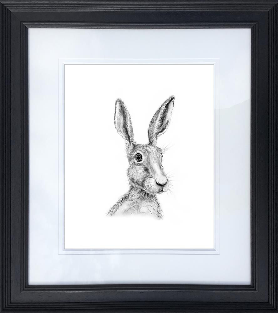 Al Hayball - 'Percy' - Limited Edition Art
