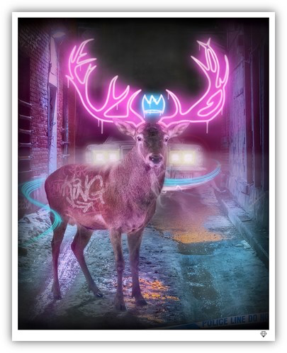 JJ Adams - 'Deer In The Headlights' - Limited Edition Print & Original
