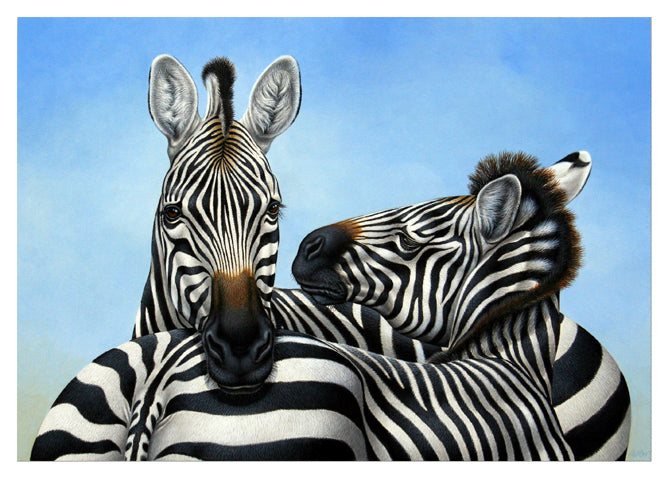 Richard Orr - 'Zebras, Affection' - Original Art
